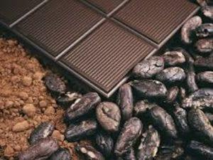 Kakao, kakaobønner og chokolade - Økotaste - Økologiske specialiteter